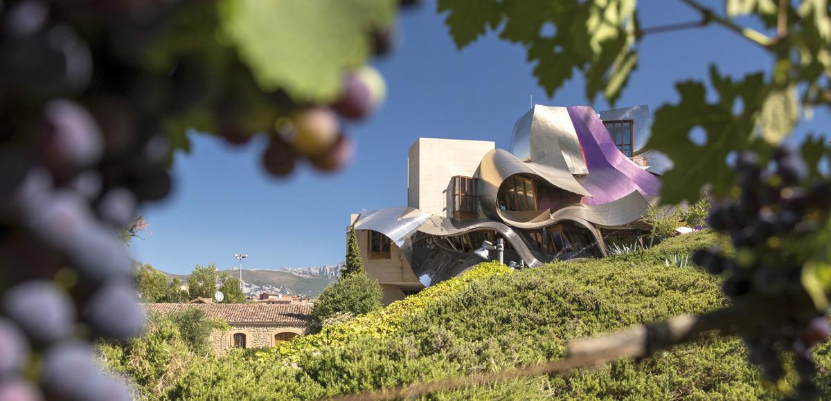 Hotel Marqués de Riscal: enoturismo di lusso