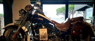 Harley Davidson Riccione TopLook Magazine ospite dell'evento privato: Motorfan goes to Ibiza