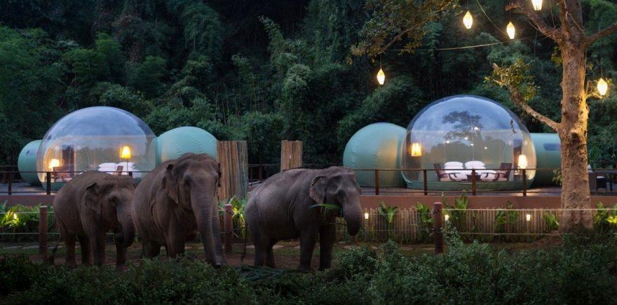 Anantara Resort Thailandia: dormire tra gli elefanti a scopo benefico
